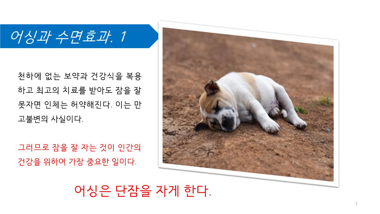 어싱과 수면효과.jpg