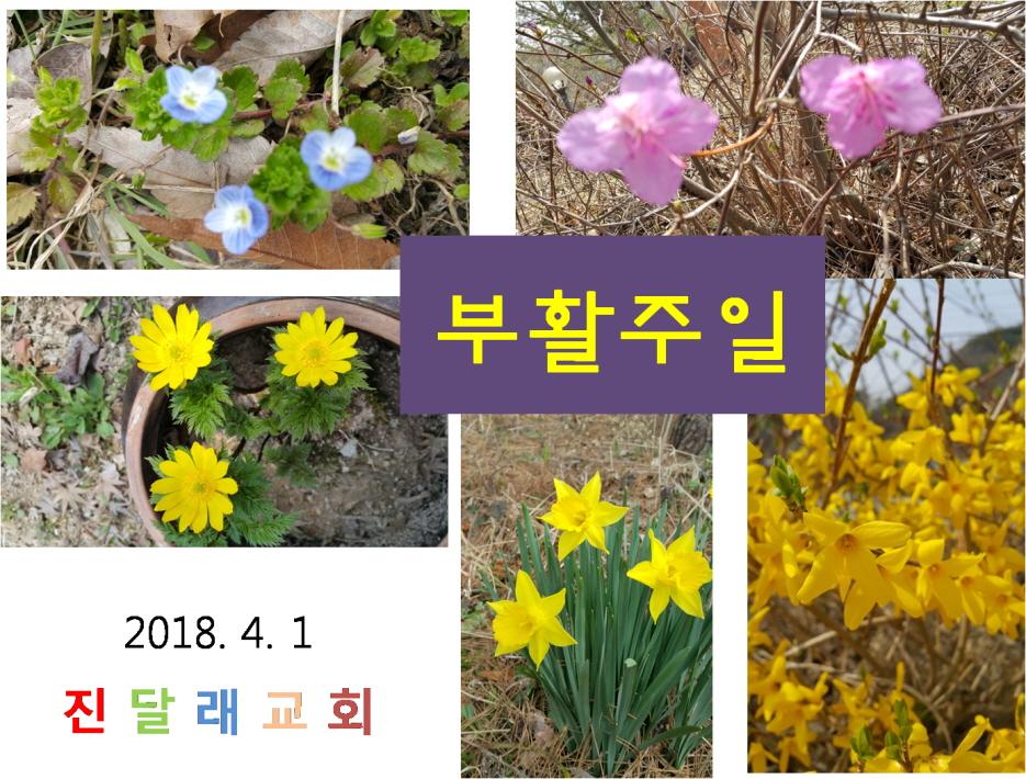 꾸미기_그림4.jpg